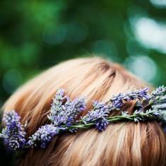 Полезные травы для роста волос