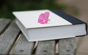 Подарок книга