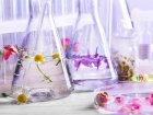 Гидролат и его использование